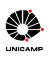 unicamp-pre_verm-jpg.jpg